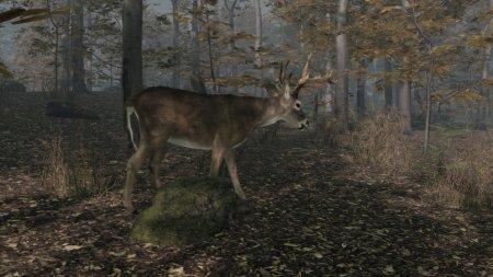 Pro Deer Hunting 2 (2021) PC | Лицензия